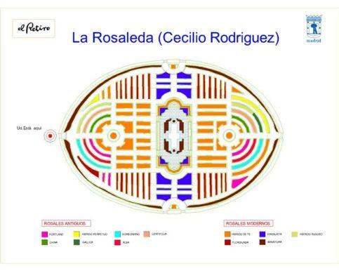 RosaledaRetiroPlano