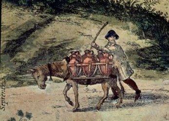 Aguador con mula. Foto: Wikipedia